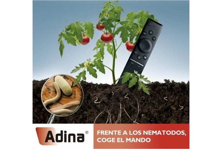Contra los nematodos, ¡coge el mando con Adina!
